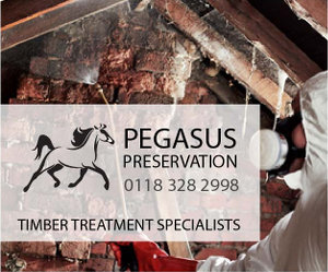 Pegasus Timber Treatment Specialists